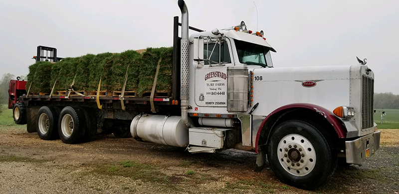 Southern Maryland Sod Delivery